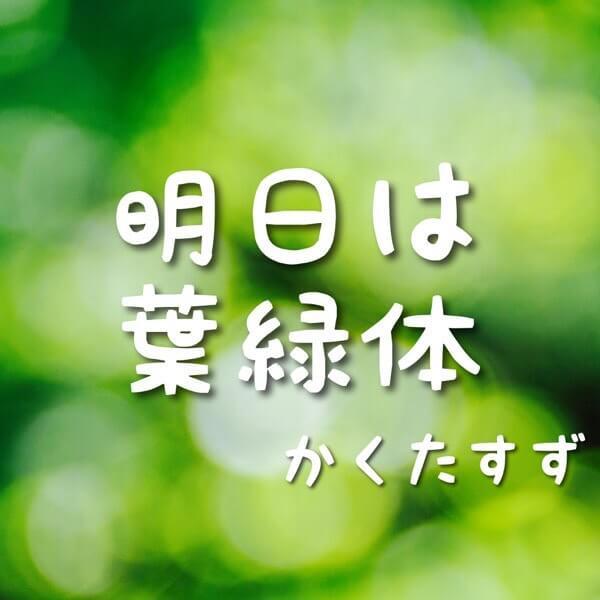 明日は葉緑体