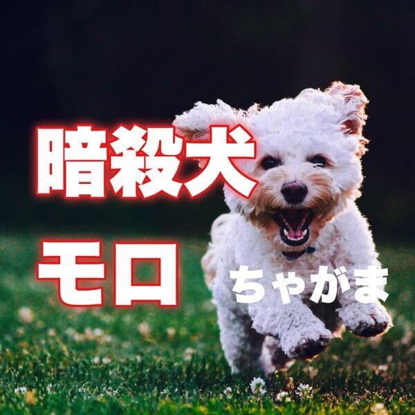 暗殺犬モロ